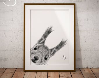 CUTE PEEKABOO SQUIRREL Drawing download, Wall decor, Peekaboo Squirrel Print, Printable Squirrel Poster, Squirrel Decor, Peekaboo Animals