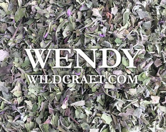 Bee Balm Wild Bergamot Organic