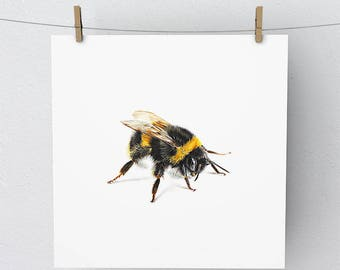 Bumble Bee Print Artwork Picture