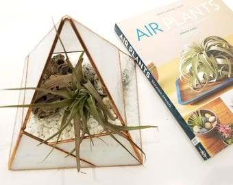 Rocky Mountain Terrarium Container / Air Plant Holder / Geometric Terrarium