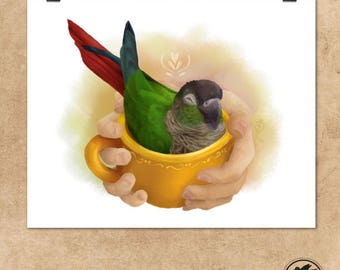 "A Cup of Conure || Art Print || 8"" x 10"" 