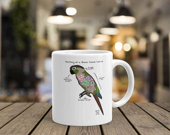 Anatomy of a Green Cheek Conure - Funny Green Cheek Conure Mug