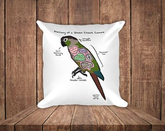 Anatomy of a Green Cheek Conure - Funny Green Cheek Conure Square Pillow