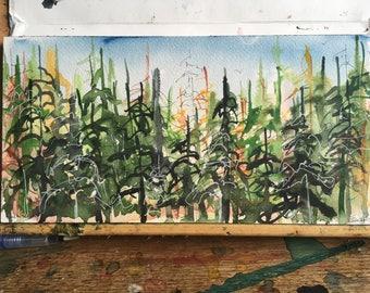 Green Screen, 2017