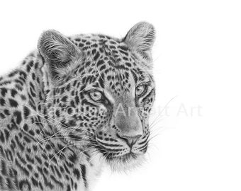 """Searching Amur Leopard 11x14"""" Limited edition print"""
