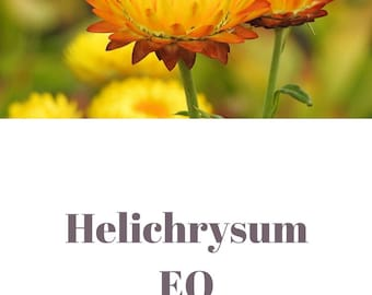 Helichrysum essential oil QRDS