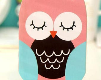 N ° 2: OWL notebook