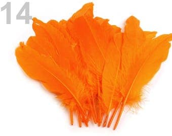 014 - Set of 5 feathers orange 16/21 cm