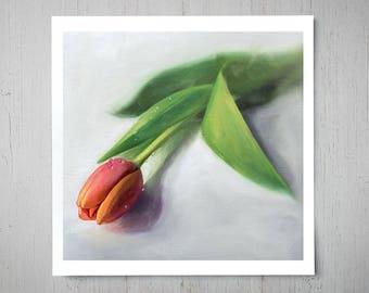 Dew Drop Tulip - Fine Flower Art Oil Painting Archival Giclee Print Decor by Artist Lauren Pretorius