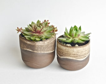 Handmade Ceramic Planters - Pottery Planters - Succulent Planters - Cactus Planters - Thrown and Altered - Flower Pot - Clay Planters
