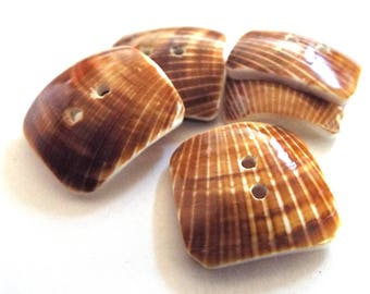 Square Shell Buttons - Sea Shell Buttons - Lot of 5 - Sew Through Buttons - Brown Striped - Beach Nautical Button