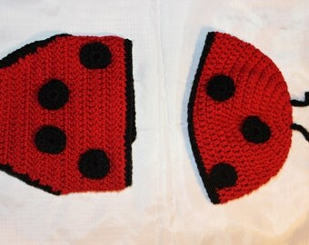LadyBug Diaper Cover and Hat