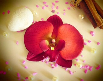 Red Orchid hair clip