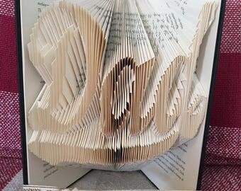 Dad folded book