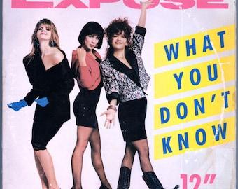 "Expose - What You Don't Know (12"" Single) (1989) PROMO Vinyl LP  DJ Remixes"