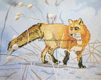 Red Fox Watercolor Print Fox Painting Fox Wall Art Fox Picture Fox Artwork Country Decor Fox Lover Gift for her Snow Fox in Snow Animal Art