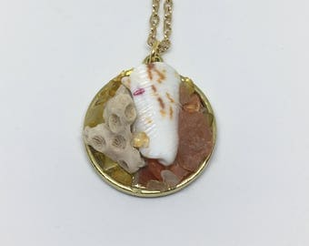 Tropical seashell necklace, seashel and coral necklace, tropical beach pendant, agate and cinrine necklace for her, beach jewelry for women