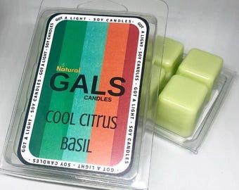 Cool Citrus Basil Soy Wax Melt Organic