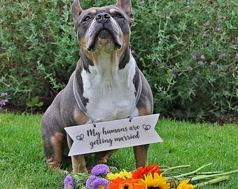 My Humans Are Getting Married Dog Sign, Engagement Announcement, Dog Wedding Sign Wood,