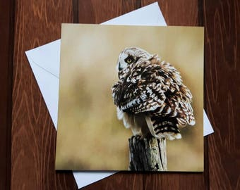Owl Greetings card 14cm square