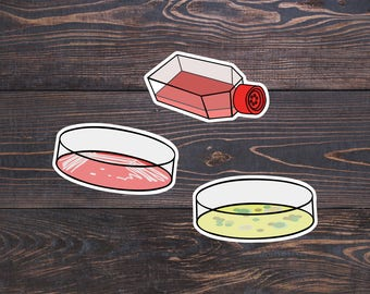 Microbiology Stickers - 6 Lab Stickers/Laboratory Vinyl Decor - Mold/Bacteria Petri Dish/Virus Flask/Microbes - Lab Tech/Microbiologist Gift