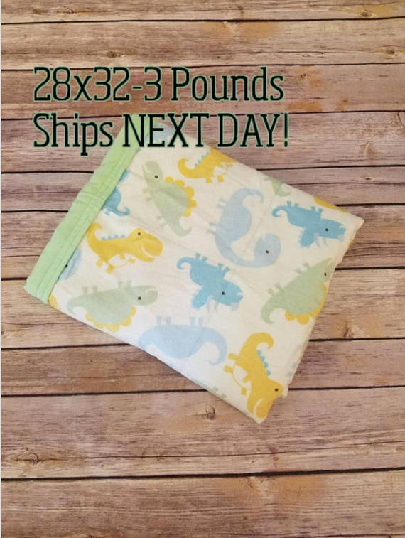 Dinosaur, 3 pound, WEIGHTED BLANKET, Ready To Ship, 3 pounds, 28x32 for Autism, Sensory, ADHD, Calming, Anxiety,