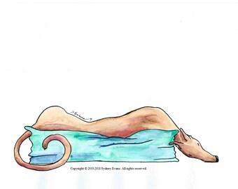 Sleep Tight Tesla, Original Greyhound Ink & Watercolor Illustration
