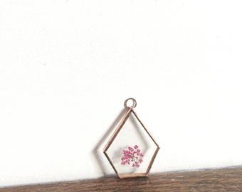 Glass pressed flower frame - Geometric  - cow parsley - Wall hanging