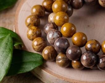 PETRIFIED WOOD Power Bracelet - Petrified Wood, Petrified Wood Bracelet, Petrified Wood Beads, Beaded Bracelet, Wood Jewelry E0605