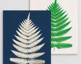Classic Fern IX- Botanical Decor- Botanical Gifts- Prints for Decor- Botanical Art- Ferns- Nature -Vintage -Vintage Prints -Vintage Art