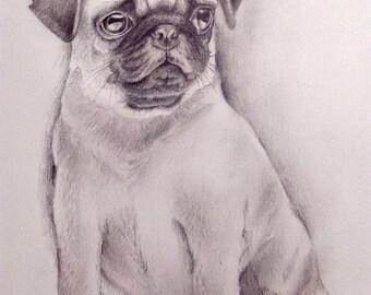dog portrait pencil drawing custom pet portrait custom art animal