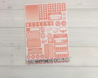 Salmon Functional Sampler - Weekly Kit  - Functional Stickers - Erin Condren Planner Stickers