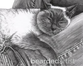 "8.5x11"" OR 11x17"" Print of Siamese Cat"