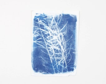 Handmade Art Print / Small Original Botanical Floral Cyanotype Photogram Art / Blue / Indigo Print
