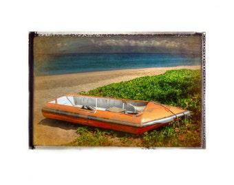 Maui Pontoon Boat