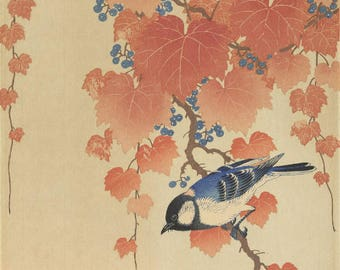 "Japanese Art Print ""Bird and Red Ivy"" by Ohara Koson, woodblock print reproduction, fine art, asian art, cultural art, paulownia"