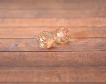 Real miniature sea shells, Stud, Globe, Earrings.