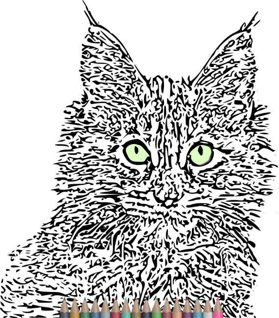 adult coloring pages cat coloring pagesinstant download printable art printable coloring pages