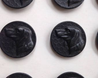 Button set of 6 x French Hunting dogs head (marked PARIS).