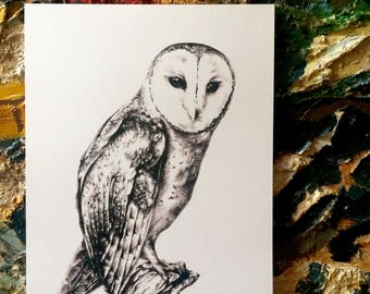 Masked Owl - Signed A4 Art Print of Charcoal Artwork