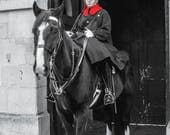 Household Cavalry Blank G...