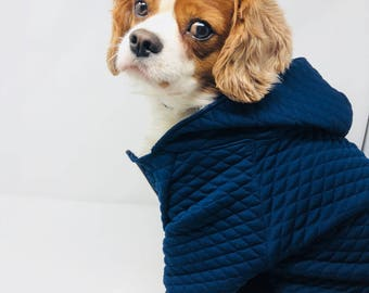 Quilted Navy Dog Hoodie