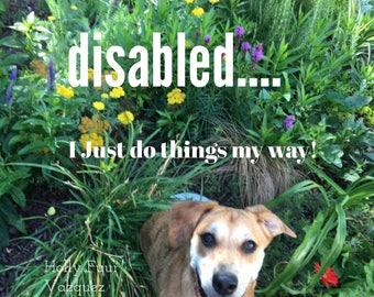 Motivational Poster: Not Disabled