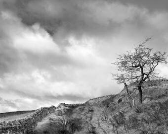 Hudson Moor above Todmorden (photograph)