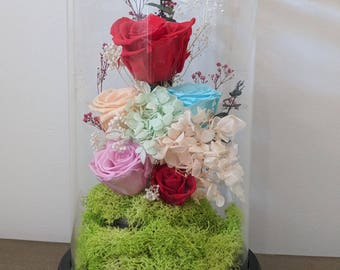 Beauty and the beast rose, Enchanted Rose, Rose in glass dome, Forever rose, Rose in Glass, Preserved Rose