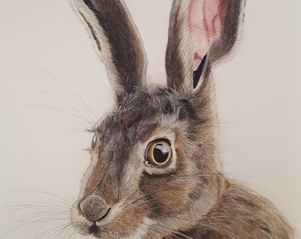 A4 Mounted Hare Print