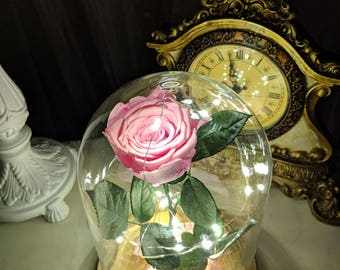 Real Pink Forever Rose in Glass Dome with LED lights,Glass Dome Rose with lights,Beauty and the beast rose,Valentines gift,Girlfriend gift