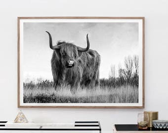 Highland Cow Print - Farm Animal Wall Art, Digital Download, Cow Poster, Cattle Photography, Animal Portrait, Black And White, Farm Nursery