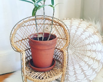 Vintage 1970's Wicker Chair Plant Stand