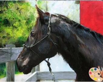 Custom Pet Portraits , Horse Portraits, Pet Oil Portraits on Canvas or as Canvas Prints Equine Art